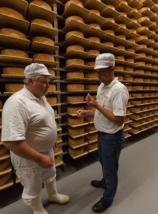 Qualitätsbeurteilung Käselaibe